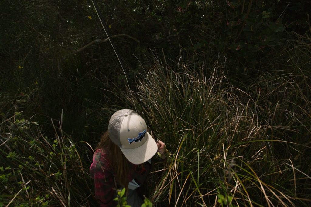 Trekking through Sitka spruce to the water's edge