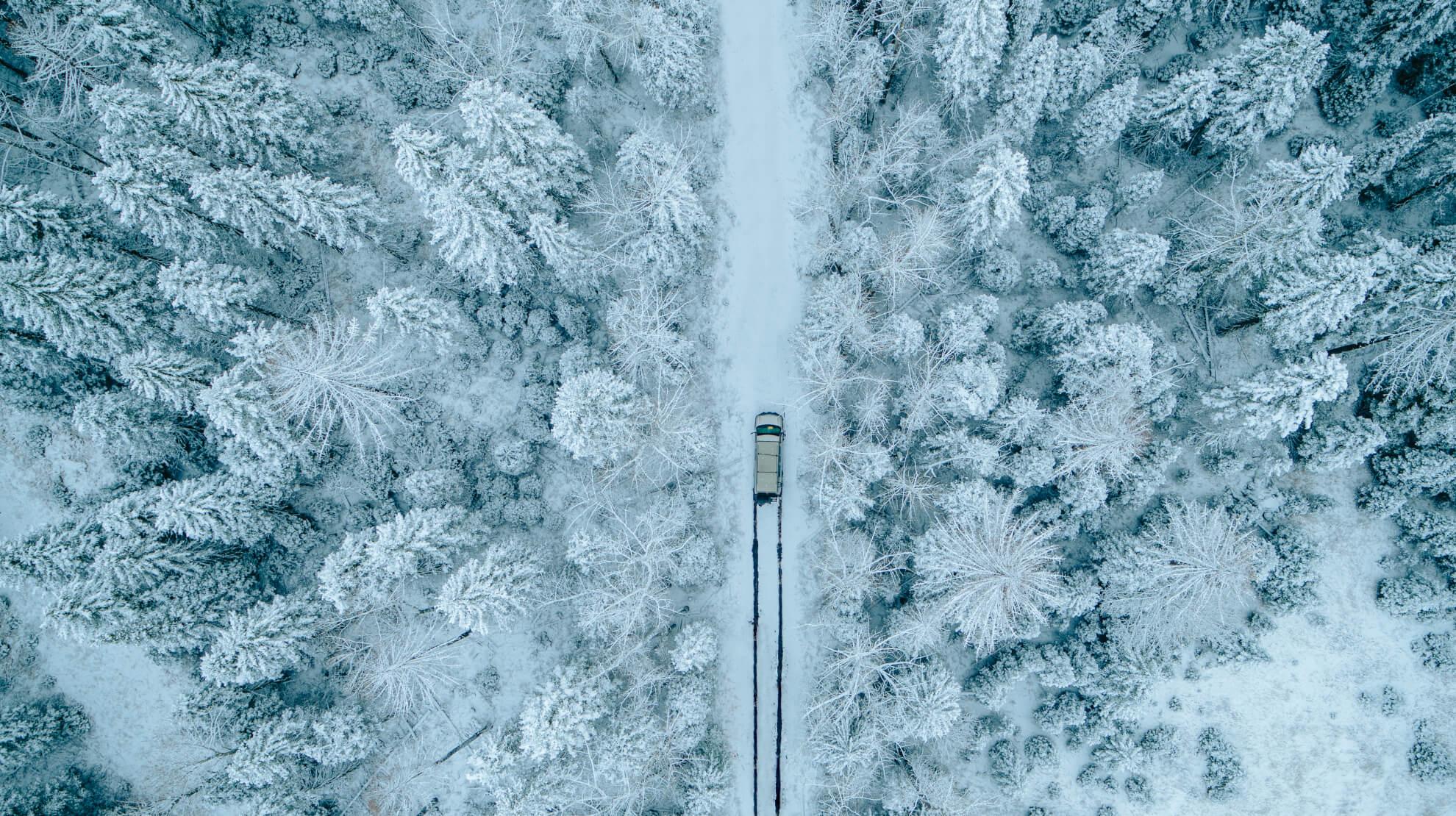 ROAMERICA campervan winter road trip - BX Films