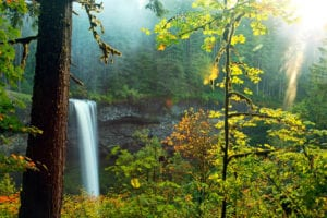 Waterfall in Silver Falls State Park