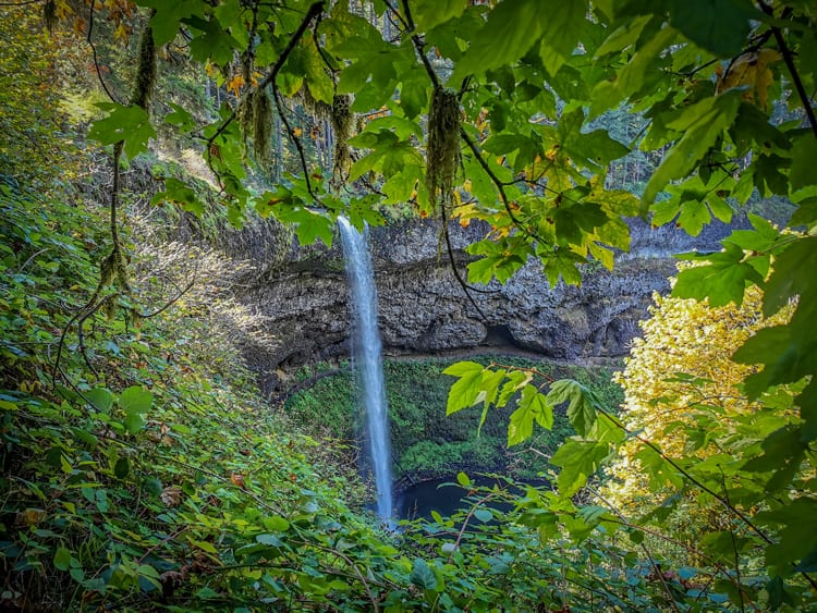 Silver Falls Stat Parks waterfalls are breathtaking and you can walk behind the waterfall