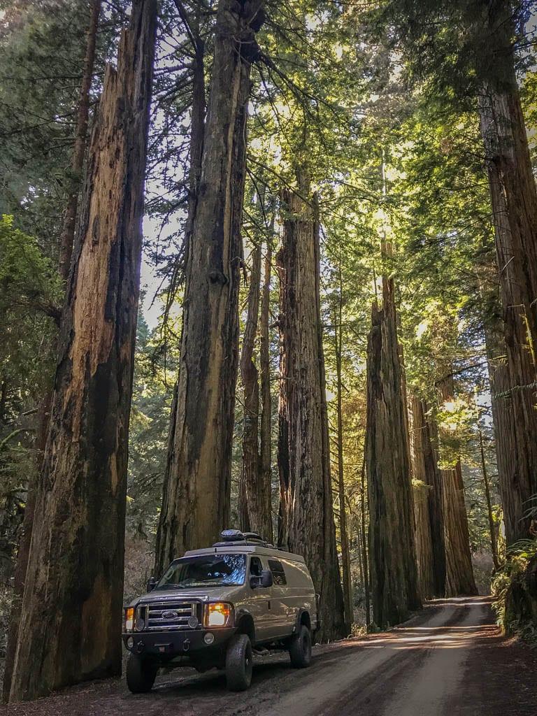 Redwood camper van adventure