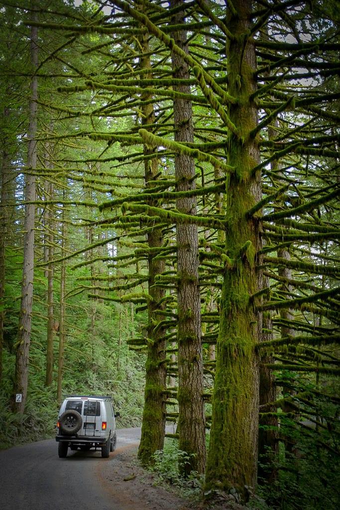Moody mossy adventure van road trips in the PNW